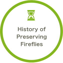 History of Preserving Fireflies