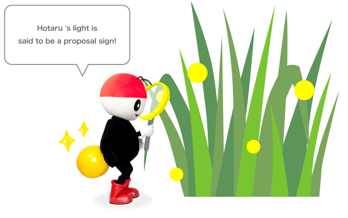 Hotaru 's light is said to be a proposal sign!